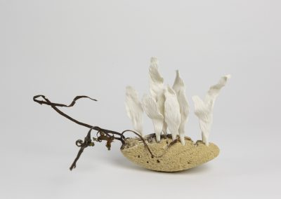 Debbie Hill - Fragility #1 - Hand built Porcelain, marine sandstone and seaweed